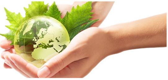 environmentalpolicy
