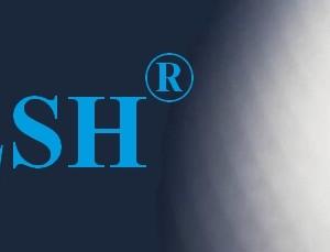 timesh-webpage